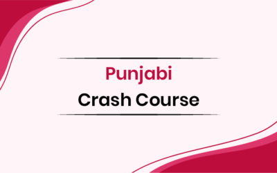 Punjabi Crash Course